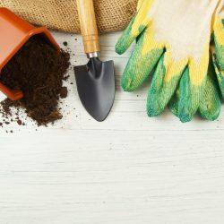 Garden Tools 4