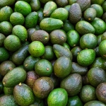 Background with fresh avocado, closeup, selective focus