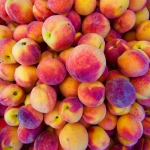 Heap of fresh organic peaches on display at a market. Full Frame Organic Food Background
